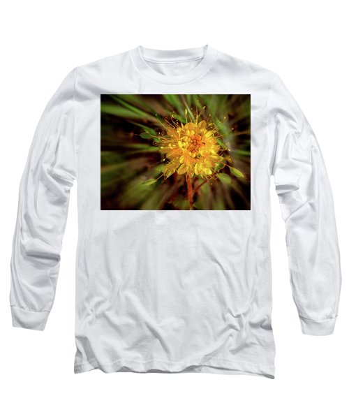 Exploding Wildflower Long Sleeve T-Shirt