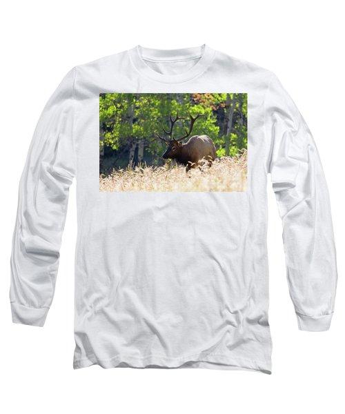 Fall Color Rocky Mountain Bull Elk Long Sleeve T-Shirt