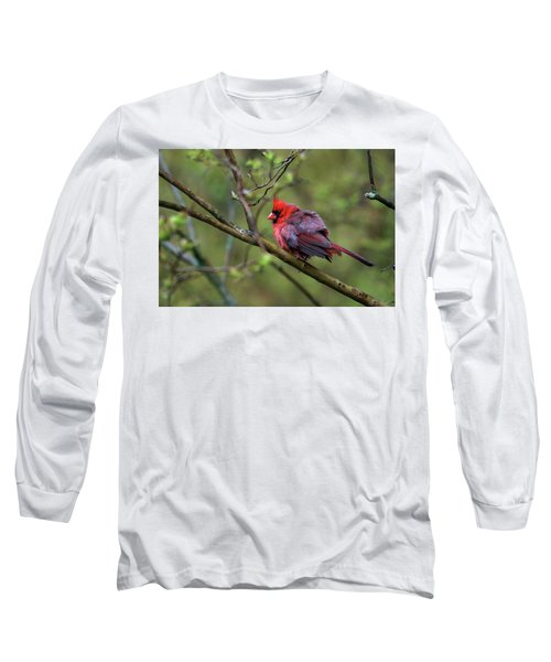 Long Sleeve T-Shirt featuring the photograph Fluffing Up My Feathers by Trina Ansel