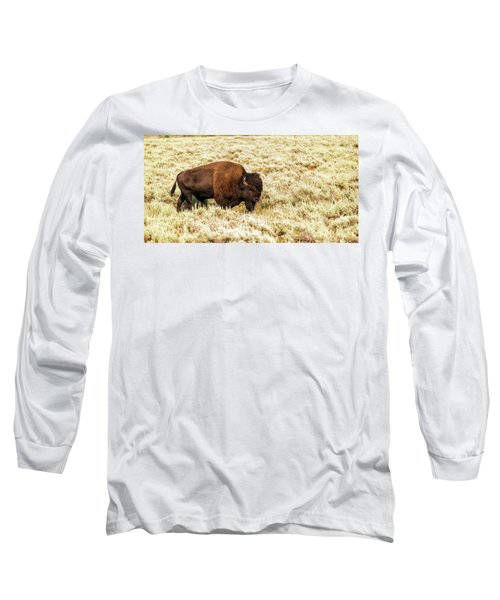 Roam Free Long Sleeve T-Shirt