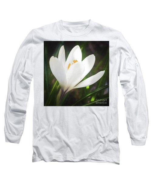 Glowing White Crocus Long Sleeve T-Shirt