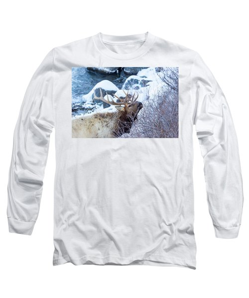 Grazing Elk Long Sleeve T-Shirt