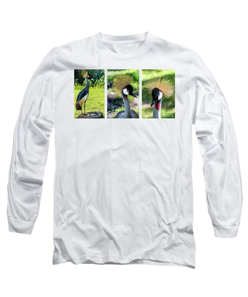 Grey Crowned Crane Gulf Shores Al Collage 4 Triptych Long Sleeve T-Shirt
