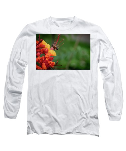 Honey Bee Extraction Long Sleeve T-Shirt