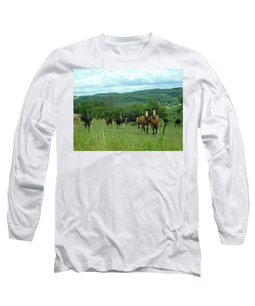 Horse And Cow Long Sleeve T-Shirt