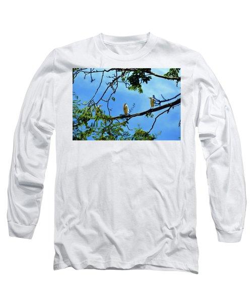 Ibis Perch Long Sleeve T-Shirt