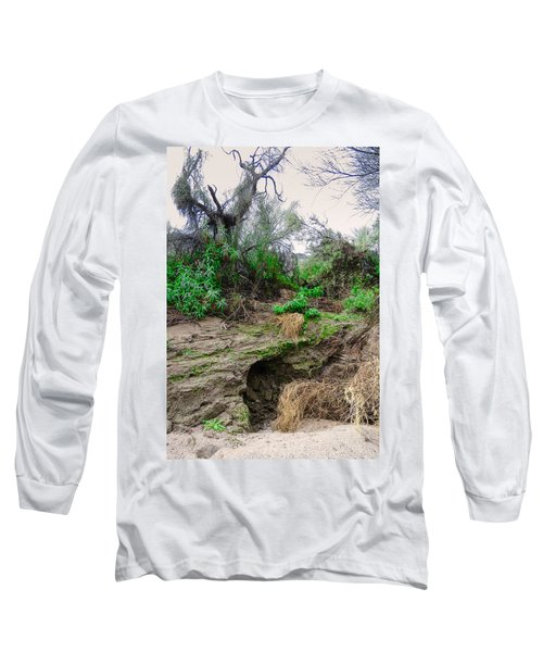 January Day  In The Vekol Wash Long Sleeve T-Shirt