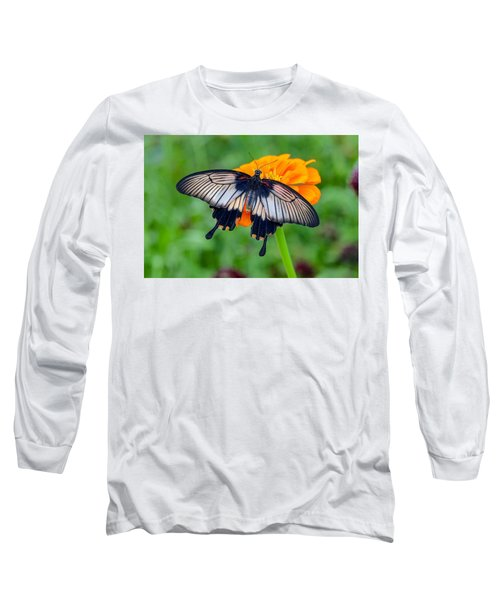 Kite Swallowtail  Long Sleeve T-Shirt