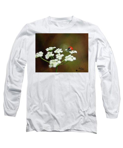 Ladybug In White Long Sleeve T-Shirt