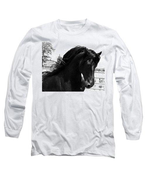 Majestic Beauty  Long Sleeve T-Shirt