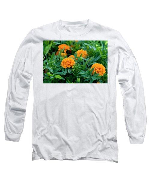 Marigolds Long Sleeve T-Shirt
