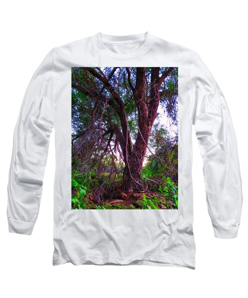 Long Sleeve T-Shirt featuring the photograph Mesquite By The Wash by Judy Kennedy