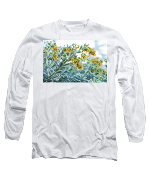 Mexican Echeveria In The  Morning Long Sleeve T-Shirt