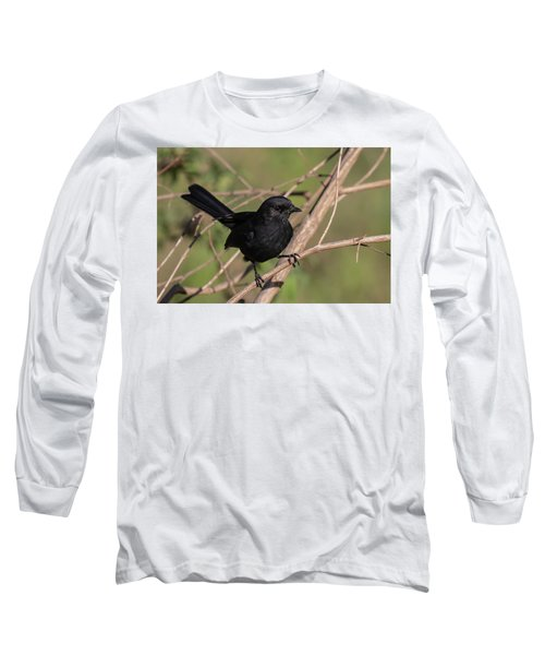 Northern Black Flycatcher Long Sleeve T-Shirt