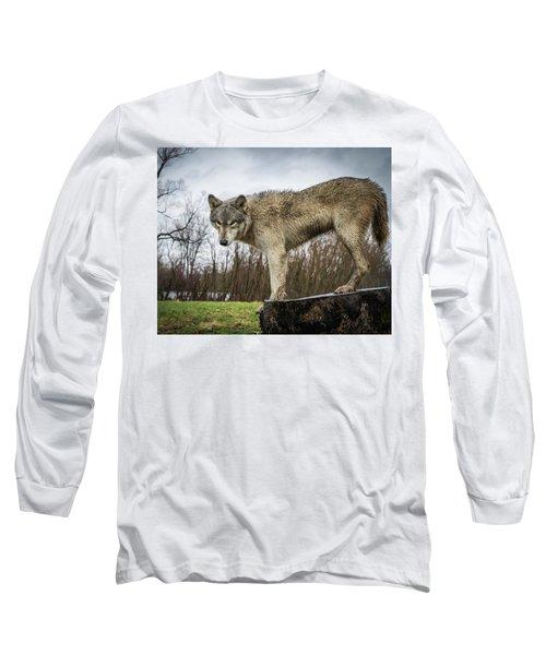 On A Slant Long Sleeve T-Shirt