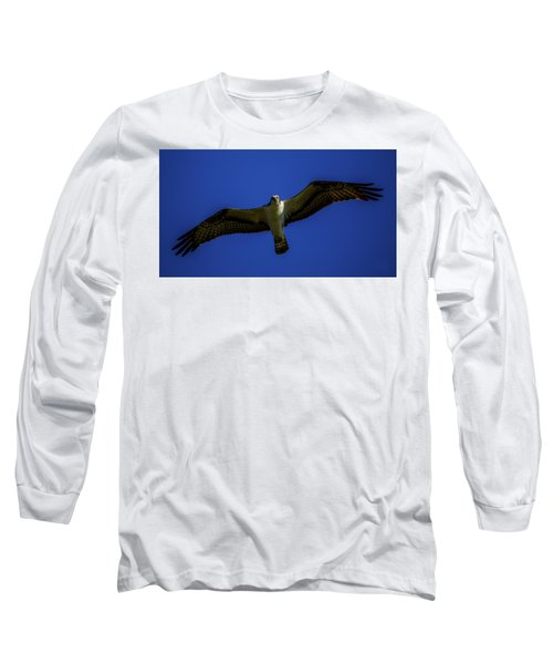 Osprey Glide In Blue Long Sleeve T-Shirt