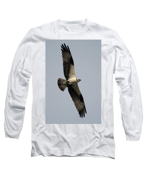 Osprey With Fish Long Sleeve T-Shirt