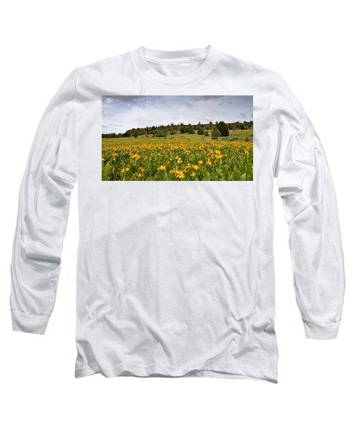 Owyhee Uplands Long Sleeve T-Shirt