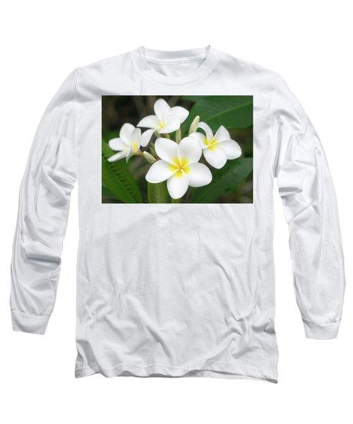 Pleasing Plumeria Long Sleeve T-Shirt