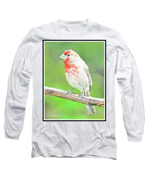Purple Finch, Animal Portrait Long Sleeve T-Shirt