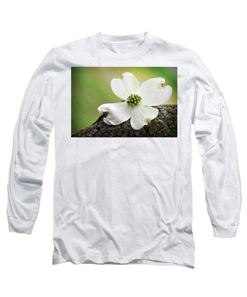 Raining Sunshine Long Sleeve T-Shirt