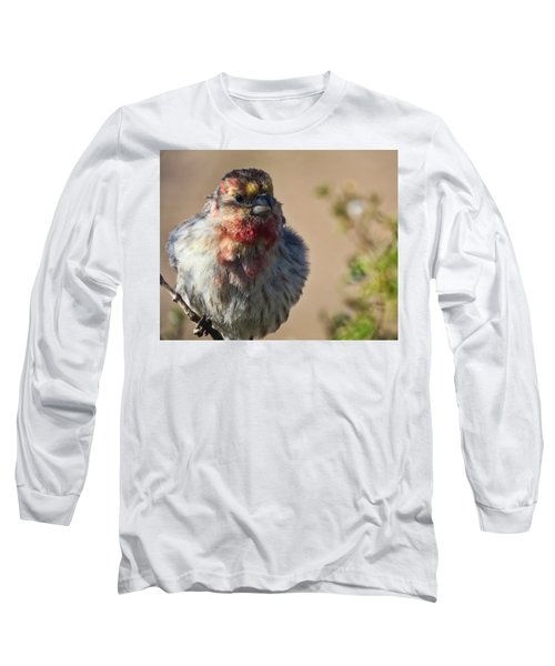 Rare Multicolored Male House Finch Long Sleeve T-Shirt