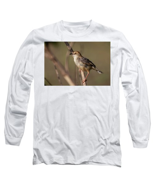 Rattling Cisticola Long Sleeve T-Shirt