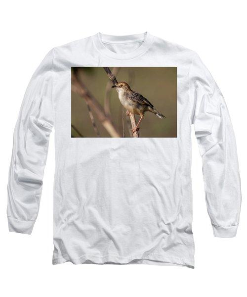 Rattling Cisticola Long Sleeve T-Shirt