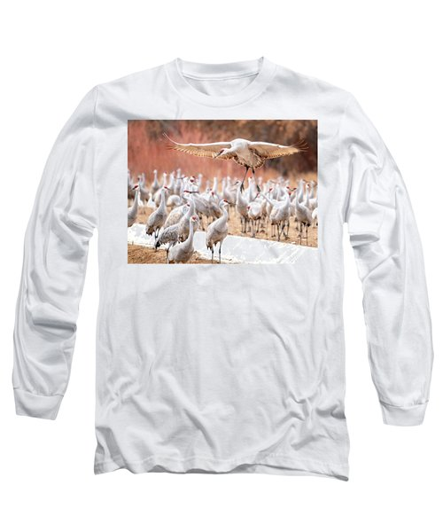 Ready Or Not, Here I Come -- Sandhill Cranes Long Sleeve T-Shirt