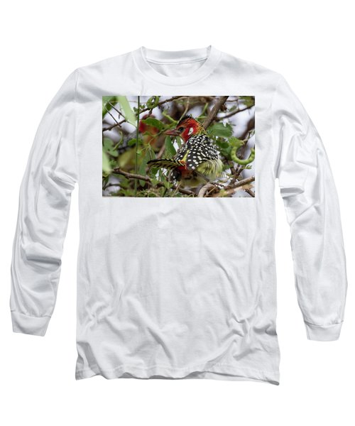 Red-and-yellow Barbet Long Sleeve T-Shirt