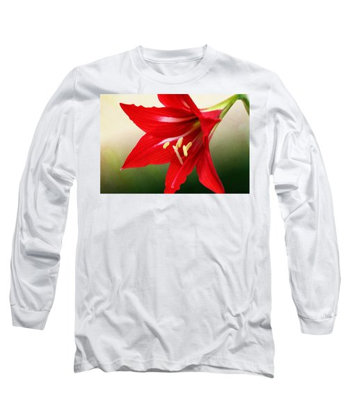 Red Lily Flower Long Sleeve T-Shirt