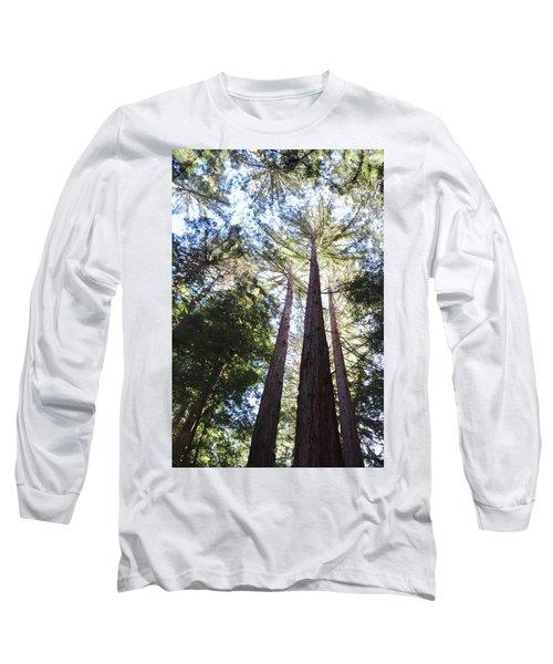 Redwoods, Blue Sky Long Sleeve T-Shirt