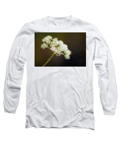 Scotland. Loch Rannoch. White Flowerhead. Long Sleeve T-Shirt