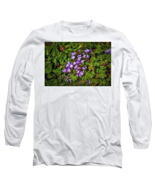September Crocus #h9 Long Sleeve T-Shirt