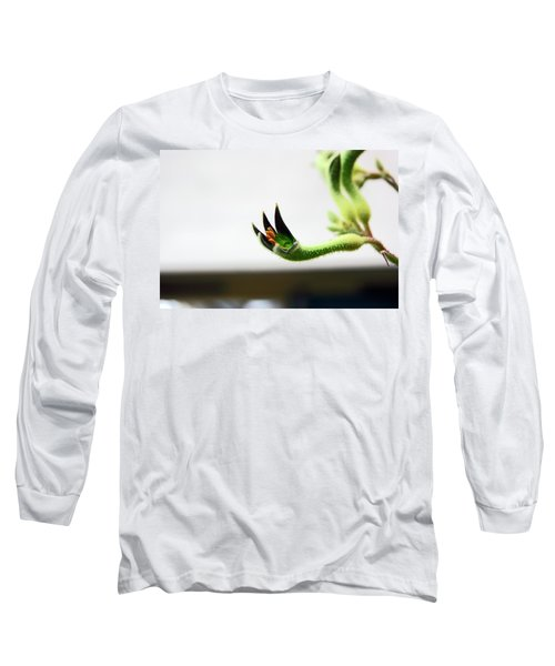 Sheffield. The Botanical Gardens Pavillions Long Sleeve T-Shirt