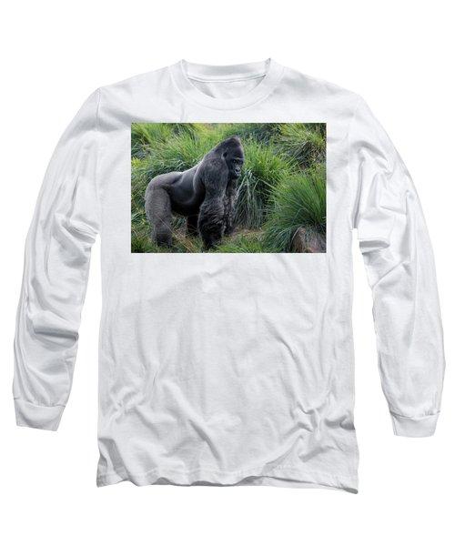 Silverback Stare 1806 Long Sleeve T-Shirt