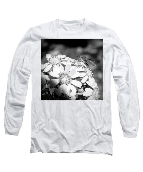 Spotlight To Pollinate Long Sleeve T-Shirt