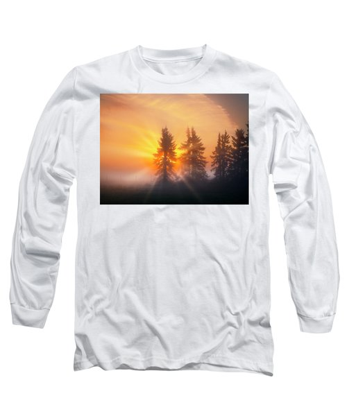 Spruce Trees In The Morning Long Sleeve T-Shirt