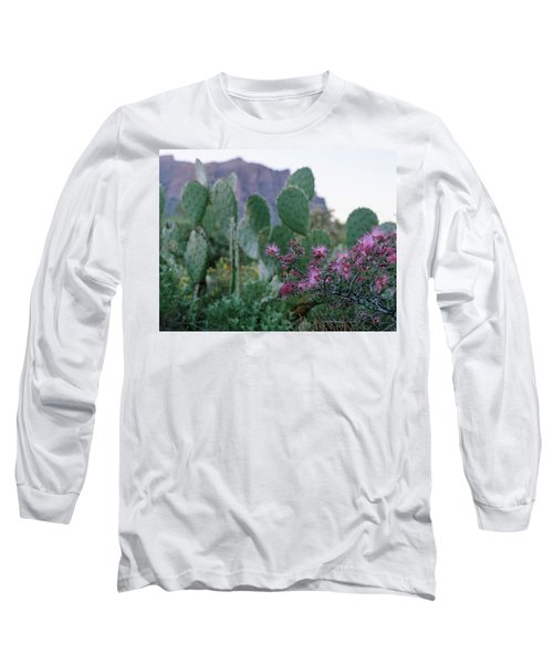 The Vibrant Desert Long Sleeve T-Shirt
