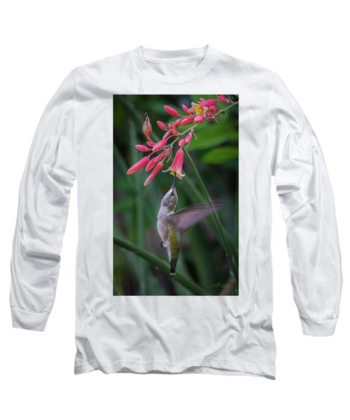 Tiny Acrobat Long Sleeve T-Shirt