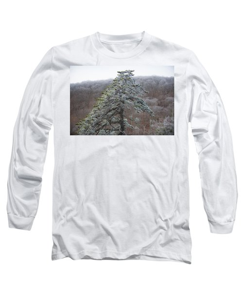 Tree With Hoarfrost Long Sleeve T-Shirt