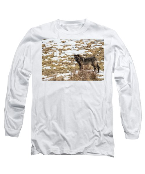 W59 Long Sleeve T-Shirt