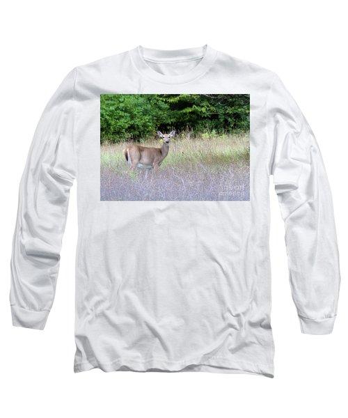 White Tale Deer Long Sleeve T-Shirt