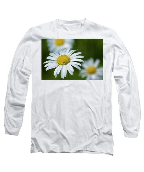 Wild Daisies Long Sleeve T-Shirt