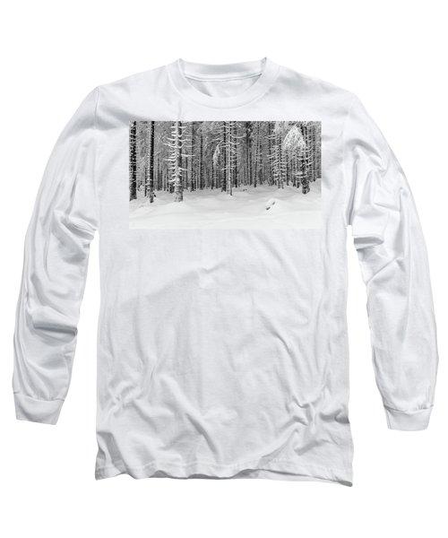 winter forest, Harz Long Sleeve T-Shirt