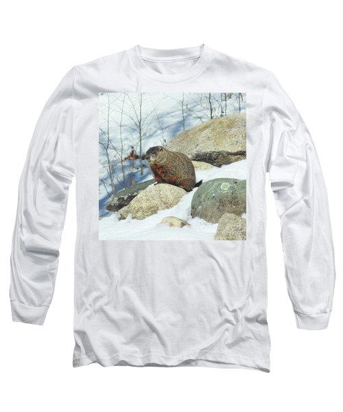 Winter Groundhog Long Sleeve T-Shirt