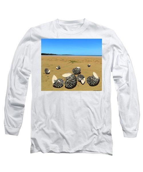 Zebra Nautilus Shells On The Beach  Long Sleeve T-Shirt