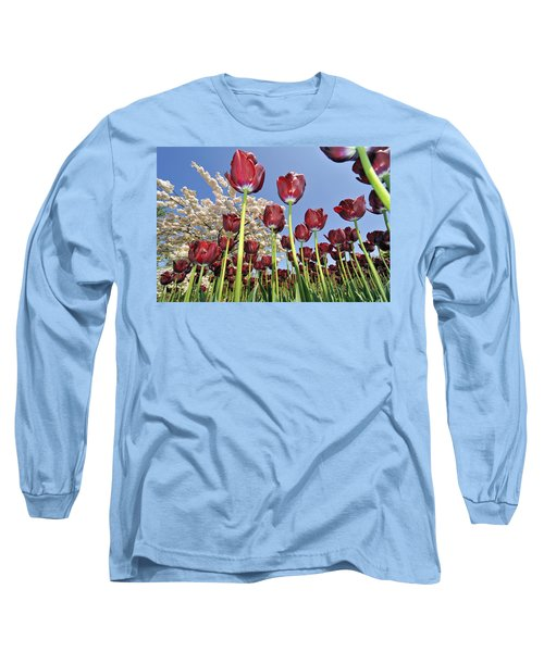 Long Sleeve T-Shirt featuring the photograph 090416p029 by Arterra Picture Library