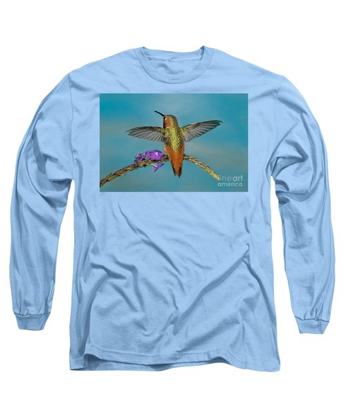 Allens Hummingbird Male Long Sleeve T-Shirt