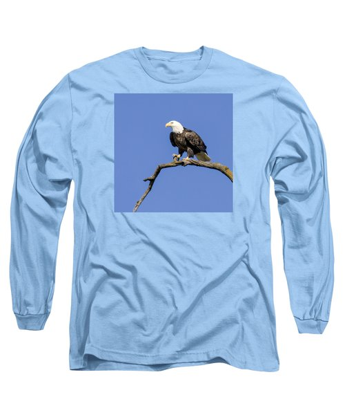 King Of The Sky Long Sleeve T-Shirt by David Lester